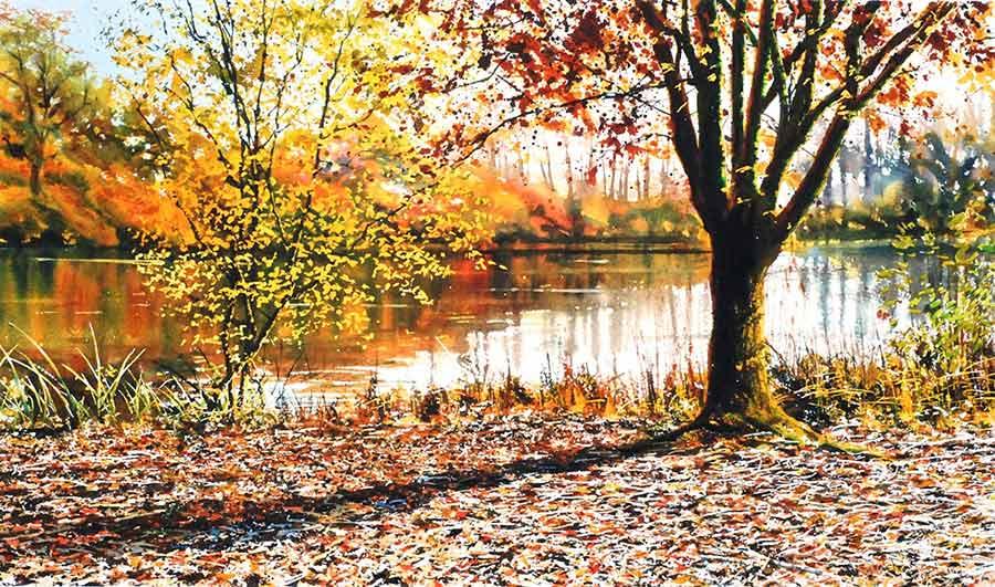 Autumn Sunshine by Joe Dowden