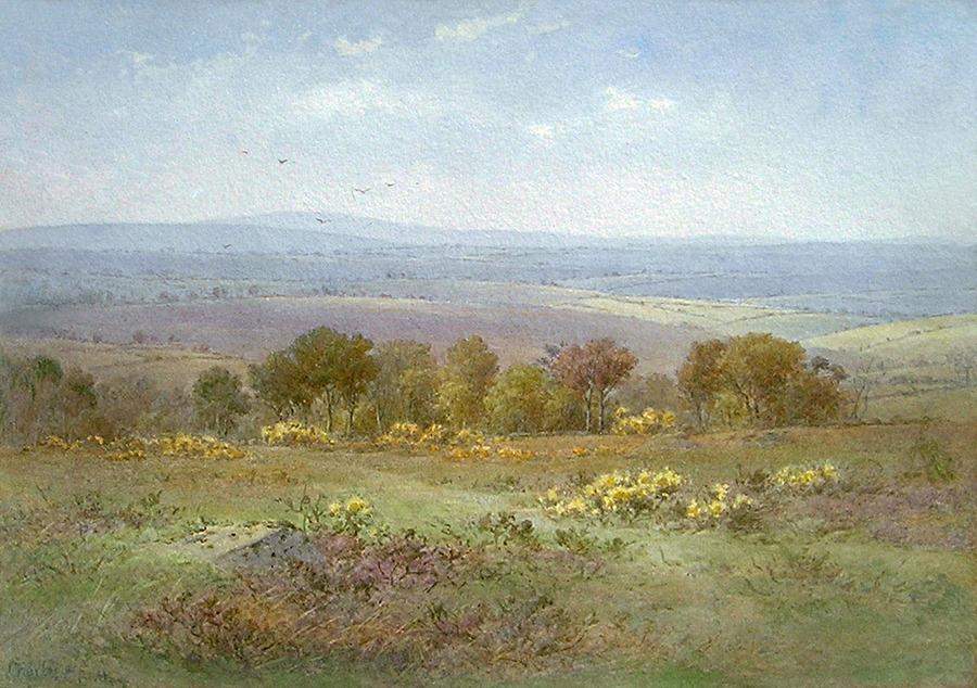 Roborough Down by Charles Edward Brittan, Jnr.