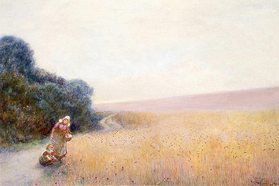 Picking Corn Poppies by John White