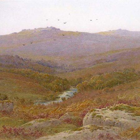 The West Dart near Dartmeet