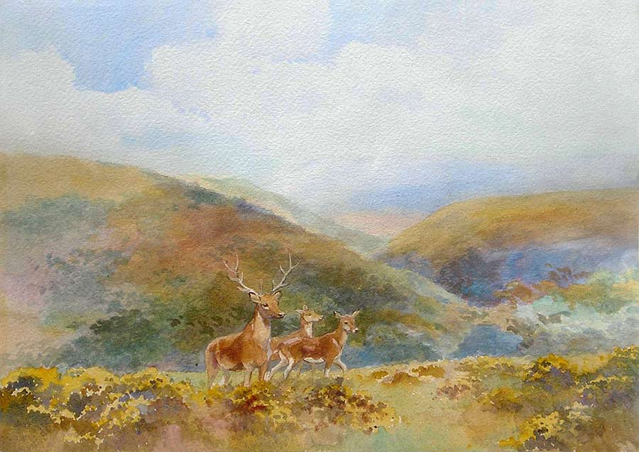 Stag and Hinds on Exmoor by Mabel Amber Kingwell